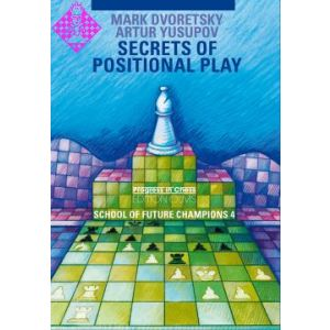 Secrets of Positional Play / reduced price