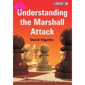 Understanding the Marshall Attack