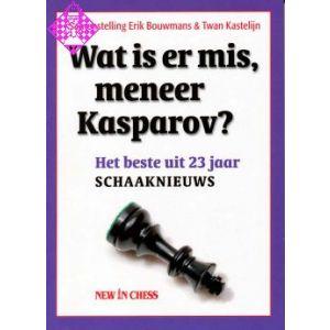 Wat is er mis, meneer Kasparov?