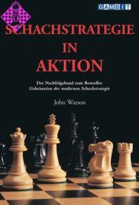 Schachstrategie in Aktion