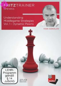 Understanding Middlegame Strategies 1