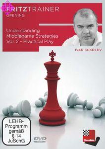 Understanding Middlegame Strategies 2
