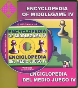 Encyclopedia of Middlegame IV